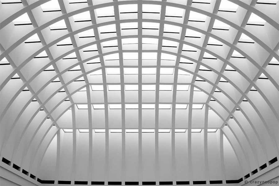 lines & curves – black & white