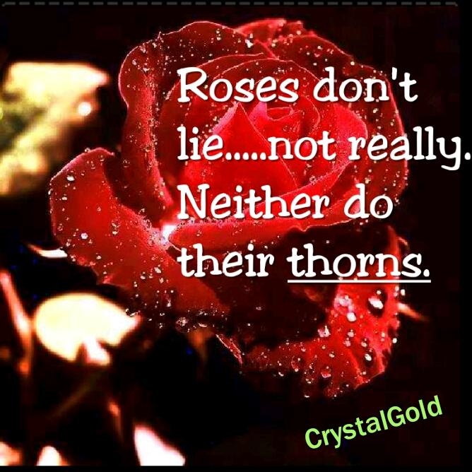 Roses Do Not Lie