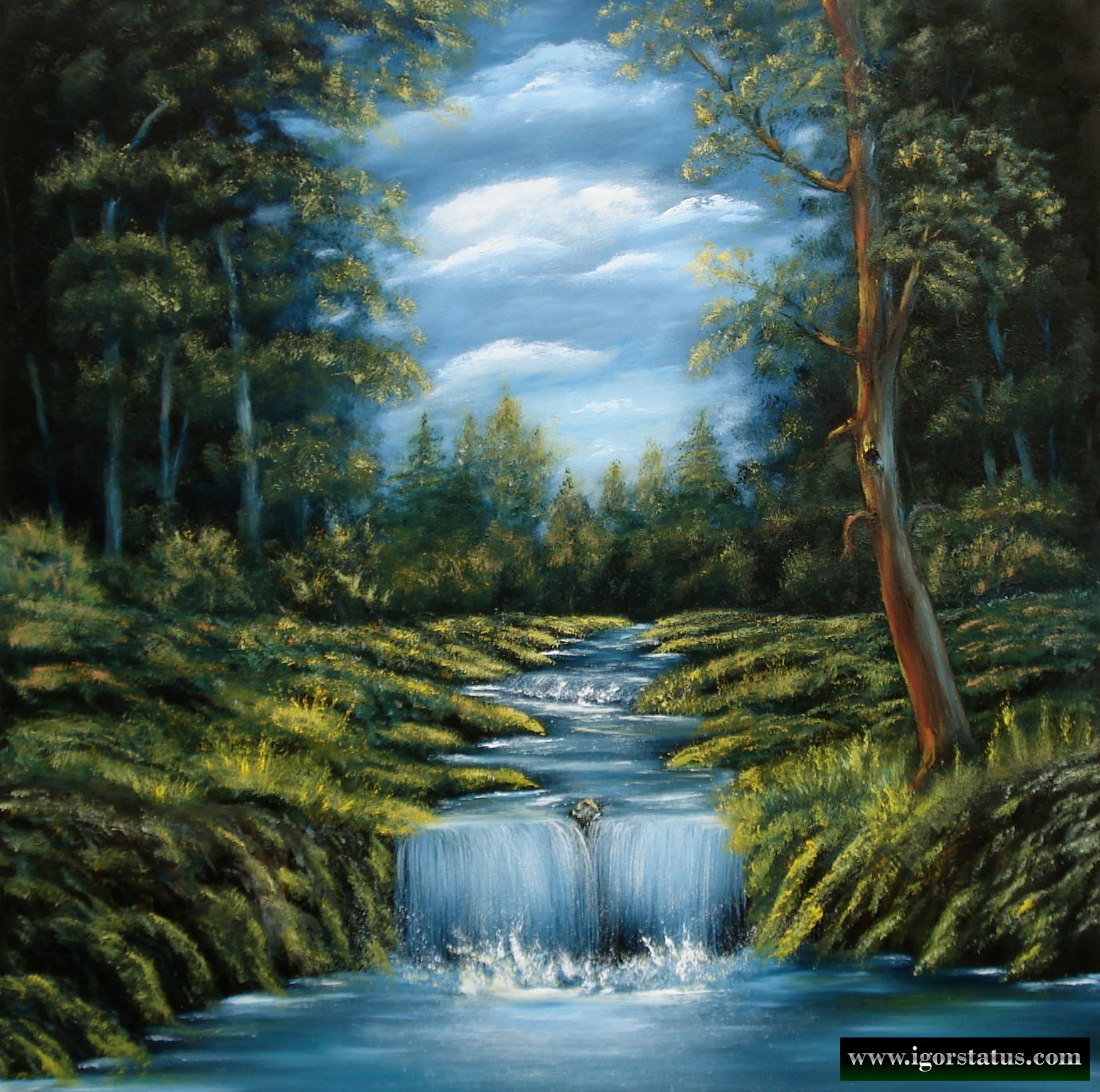A mountain brook