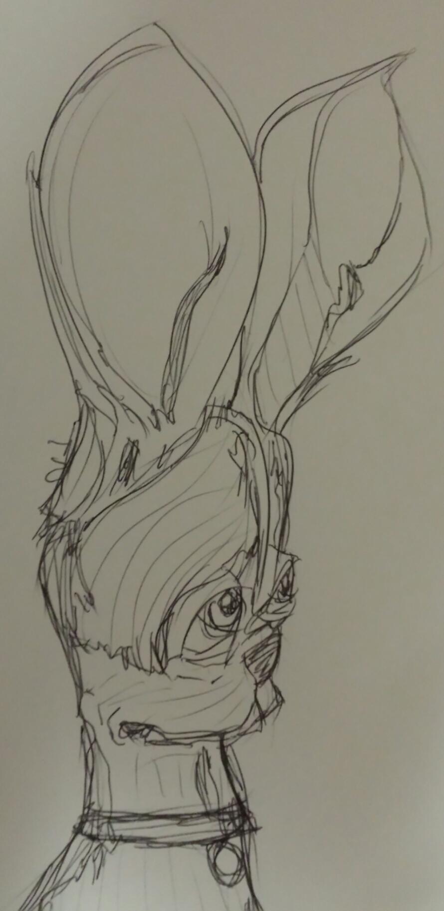 Dog with big ears 2