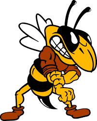 The Joy of Bing cross bee Skits zoid stings