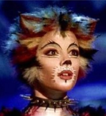 Andrew Taylor in Cats