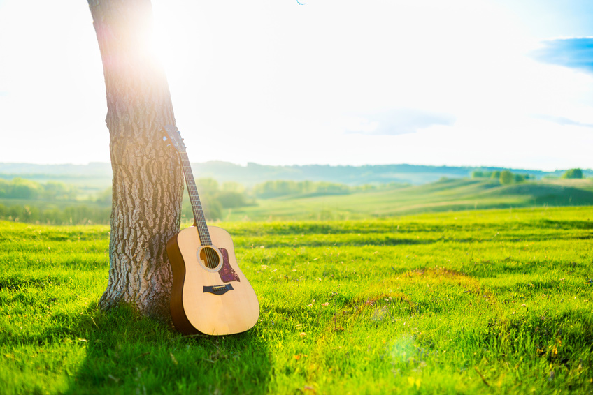 An acoustic guitar leaning against a tree in a field